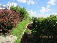 """Konkurs na """"Najpiękniejszy Ogród w Powiecie Bydgoskim"""" etap gminny Kliknięcie w obrazek spowoduje wyświetlenie jego powiększenia"""